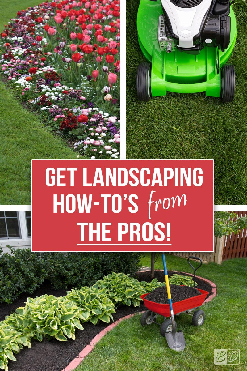 Learn all the BEST DIY landscaping tips from the pros! How-To tutorials and project inspiration all in one place; learn how to have an enviable backyard, how to design your landscape, enhance your curb appeal, and so much more. Save money AND have a beautiful yard! Click and read The Exceedingly Comprehensive Guide To DIY Home Improvement For First-Time Homeowners and get started today. Get all your DIY inspiration here!