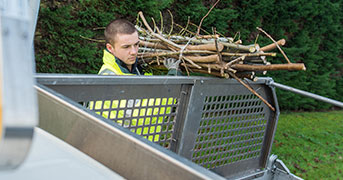 How to Dispose of Yard Waste | Budget Dumpster