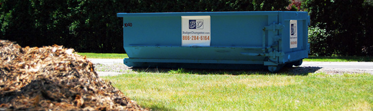 Dumpster Rental for Landscapers
